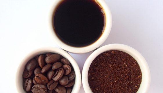 calatoria cafelei
