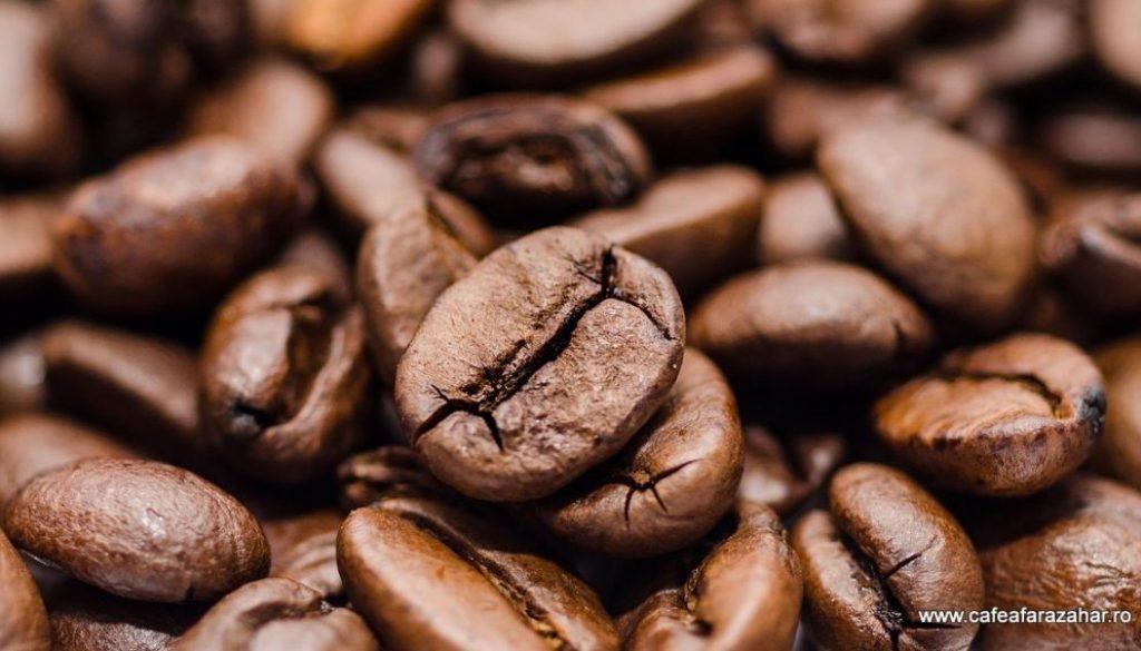 istorie-cafea-evolutie